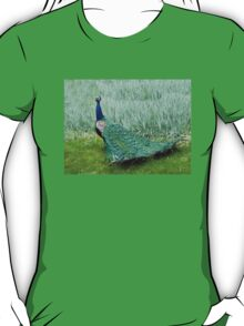 Yes, My Train of Feathers Is Indeed Spectacular! T-Shirt