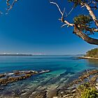 jervis bay - from huskisson by doug riley