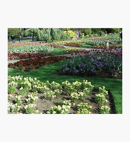 A Garden in Spring Photographic Print