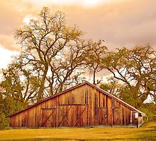 The Barn at Deavers Vineyard by William Moore