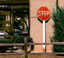 Stop Here by Jay Gross