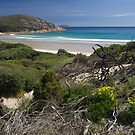 Wilsons Promontory NP, Victoria.  by johnrf