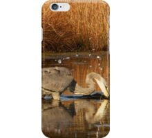 Great Blue Heron - Fishing iPhone Case/Skin