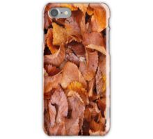 Automne Leaves iPhone Case/Skin