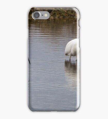 Snowy Egret Duo iPhone Case/Skin