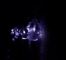 Angel Lights by Rowan  Lewgalon