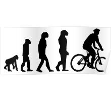 EVOLUTION CYCLE Poster