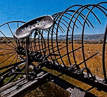 Old Horse Drawn Iron Farm Equipment by ImageOregon