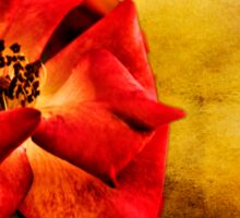 Scarlet Flower Sticker
