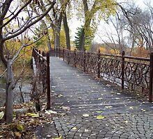 Garden Bridge by wiscbackroadz