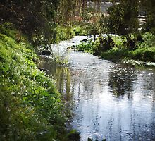 Merri creek in spring by KerrieMcSnap