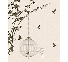 Vintage style card with bird silhouettes and birdcage Photographic Print