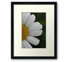 Bright and Happy  Framed Print