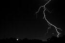 Lightning Crashes by SD Smart