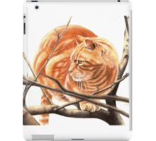 Sandy iPad Case/Skin