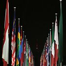 Flags by Graham Schofield