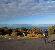Walker on Mt.Egmount, new zealand by Anthony Wilson