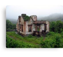 House in the Rain Forest Canvas Print