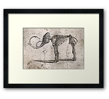 Mammoth Skeleton Framed Print
