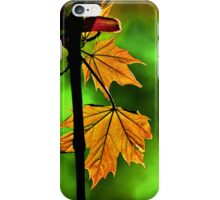 New England Maple iPhone Case/Skin