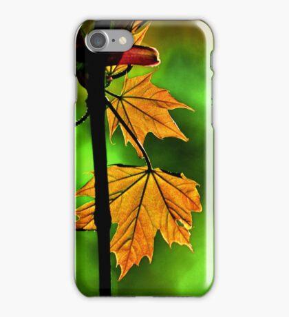 New England Maple iPhone Case/Skin