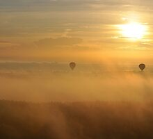 Balloons Over Floridian Sunrise by DeanHart