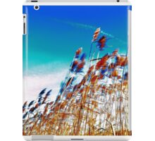 Windy Rush! iPad Case/Skin