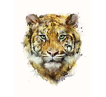 Tiger // Strength Photographic Print
