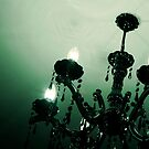 Chandelier by Emily Denise