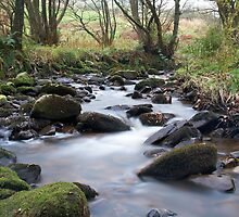 Woodland stream long exposure with silky water by Beninmanc