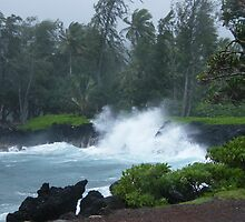 The rugged coastline of Nothern Maui.... by DonnaMoore