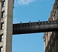 Tribune Building Bridge by marz808