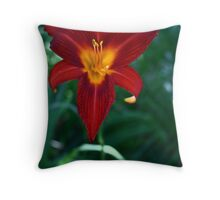 Vibrant red 2 Throw Pillow