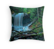 Painted falls - Ammonite Falls, Nanaimo Throw Pillow
