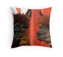 Alpaca Look A Like Throw Pillow