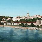 Belgrade - View from the Danube by Lena Shaw