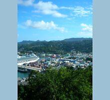 a vast Saint Vincent and the Grenadines landscape Unisex T-Shirt