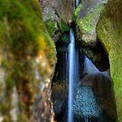 Stawamish Stream by Tristan Rayner