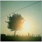 ~ summer ~ by MelAncholyPhoto