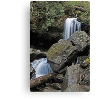 Grotto Falls, Great Smoky Mountains Canvas Print