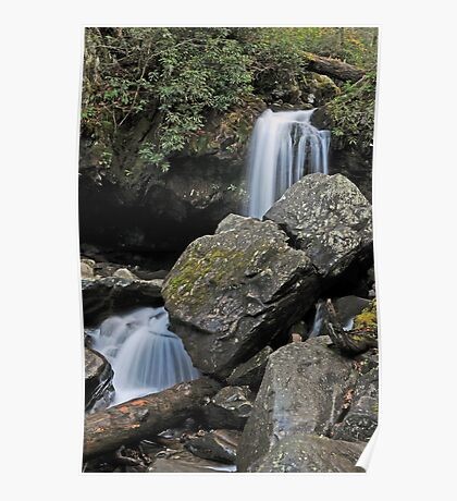 Grotto Falls, Great Smoky Mountains Poster