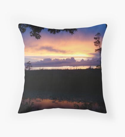 When the deep purple falls...June 1, 2015 Throw Pillow