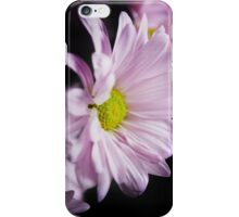 Chrysanthemum iPhone Case/Skin