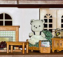 dolls house by wendywoo1972