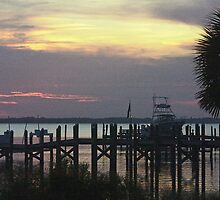 Dock at sunset by Larry  Grayam