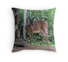 Dinner Interuption Throw Pillow