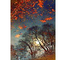 The Magic Puddle Photographic Print