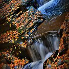 New York's Watkins Glen I by PJS15204