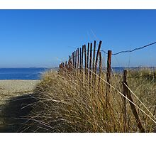 Fence and Dune Grass Photographic Print