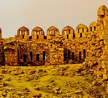 North India - Tughlaqabad Fort  - New Delhi 1 by Geoffrey Thomas